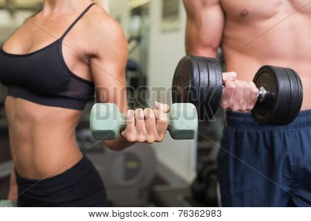 Close up mid section of a couple exercising with dumbbells in the gym