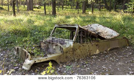 truck in the woods