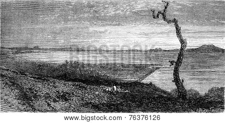 Lake Tana, Vintage Engraving.