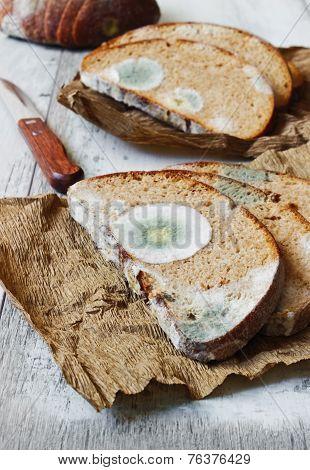 Spoiled Moldy Bread