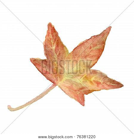 Vector watercolor leaf