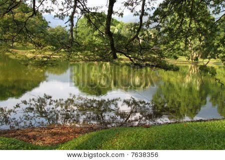 Taiping lake scenery