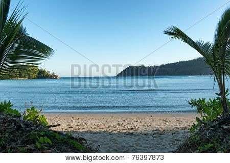 Panorama View of Beautiful Turquoise Beach with Palm Trees at Port Launay in Mahe, Seychelles
