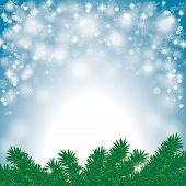 picture of x-files  - Snow with fir branches on the grey background - JPG