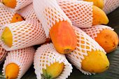 foto of papaya fruit  - Papaya fruit in the market - food fruit ** Note: Shallow depth of field - JPG