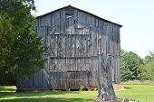 picture of tobacco barn  - Old tobacco barn on a farm in Alabama - JPG