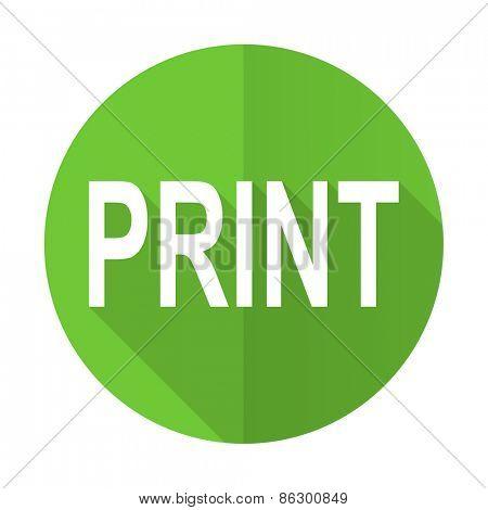 print green flat icon