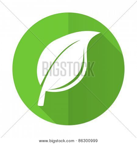 nature green flat icon leaf sign