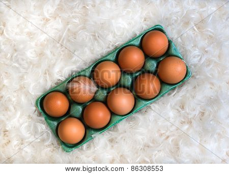 Box with ten brown eggs in the pile of white feathers and one feather on egg