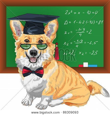 vector graduated dog Pembroke Welsh corgi