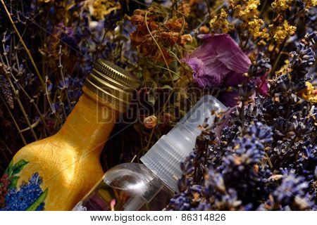 flowers and bottles with aromatic oil