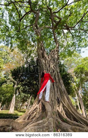 Vietnamese woman wearing Ao Dai reclining against a huge fig tree