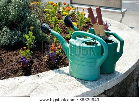 Two Watering Cans And Flowers