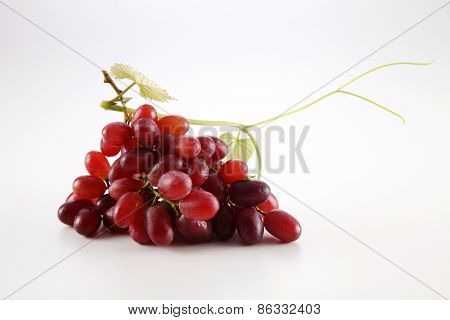 grape with leaf on white background
