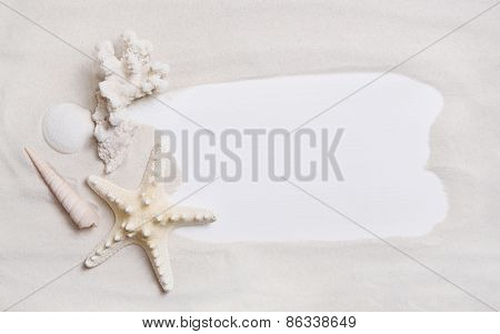 Maritime nautical background or sign with shells and starfish for an advertising message.