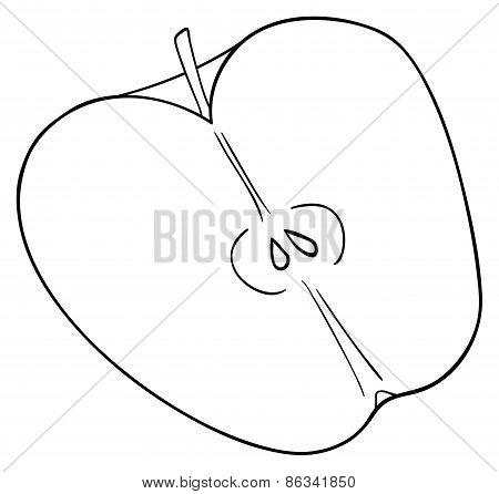 Delightful Garden - Half Of Sliced Apple With Seeds