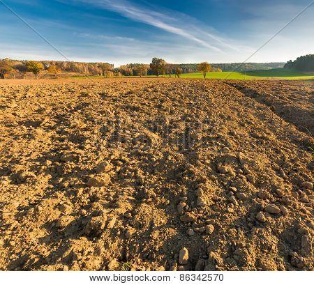 Plowed Field In Morning Light