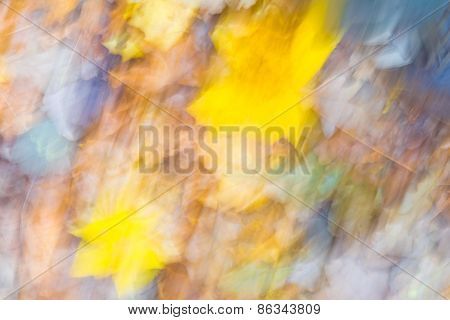Nature Abstraction