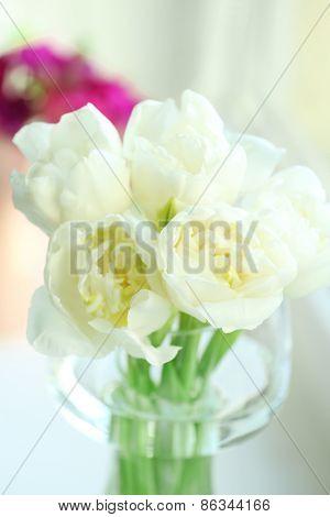 Beautiful spring flowers, closeup