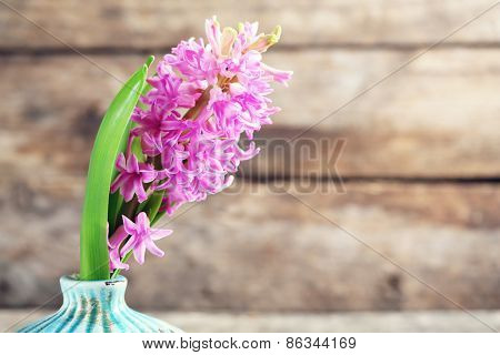 Beautiful hyacinth flower in vase on wooden background