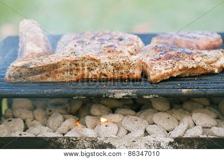 food meat - marinated juicy pork ribs on grill - summer barbecue bbq food