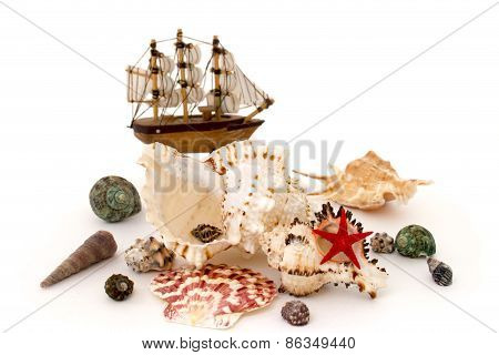 Seashell And Toy Ship Isolated Over White