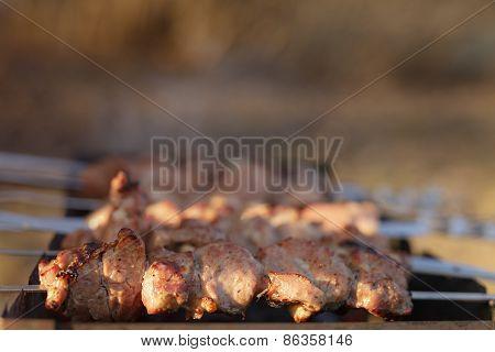 cooking pork shashlik on skewer in mangal outdoor food