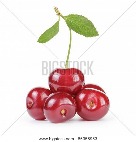 ripe clean cherries isolated on white