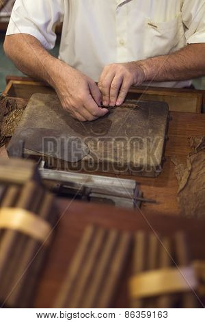 Handmade Cigar Live Preparation