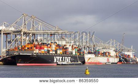 Ect Terminal Shipping