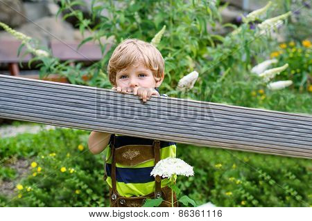 Portrait Of Beautiful Little Kid Boy In Bavarian Clothes, Outdoors