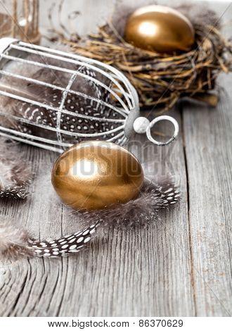 Golden Egg In Nest, On Wooden Background
