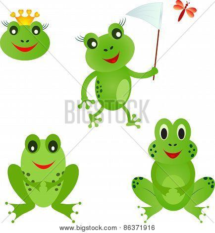 Isolated Frog Vectors, Frog Cartoons