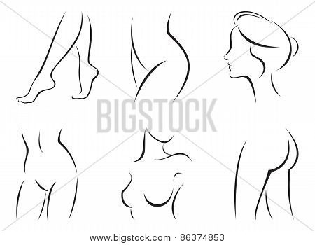 Set Of Stylized Body Parts