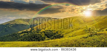 Summer Green Meadow In Mountain Panorama At Sunset