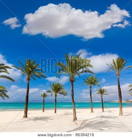 Majorca sArenal arenal beach Platja de Palma Llucmajor in mallorca Balearic Islands