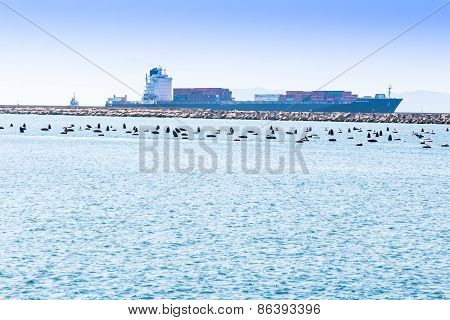 Cagliari - Italy - 8 March 2015: Santa Ricarda Container Ship Enters The Port Channel Of Cagliari