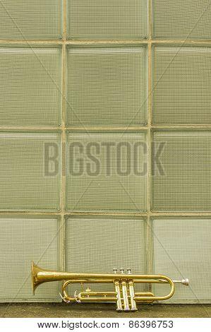 Old Trumpet Windows