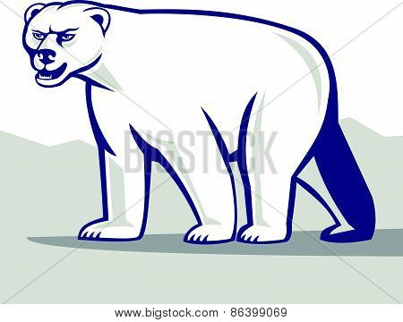Polar Bear Isolated Cartoon