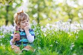 picture of bunny ears  - Cute happy little boy wearing Easter bunny ears at spring green grass and blooming apple garden eating chocolate bunny and having fun outdoors - JPG