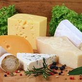 Постер, плакат: Cheese