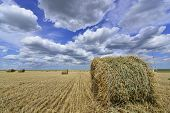 foto of haystack  - circular haystacks in windmill farm field with clouds on blue sky - JPG