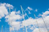 image of sails  - Sailing Must and Blue Sky Particular of sailing must in a touristic harbor - JPG