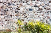 foto of stone house  - Stone wall with plants - JPG