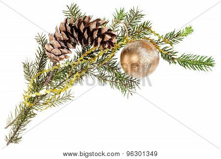 Branch Of Spruce Tree With Cone And Gold Ball