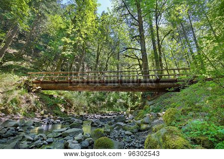 Wood Log Bridge Structure Over Gorton Creek