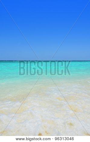 Paradise tide