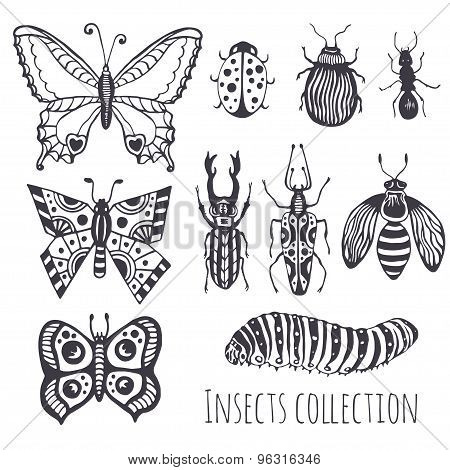 Collection of hand drawind insects Cute set of decoration for design icons logo or print. Vector illustration