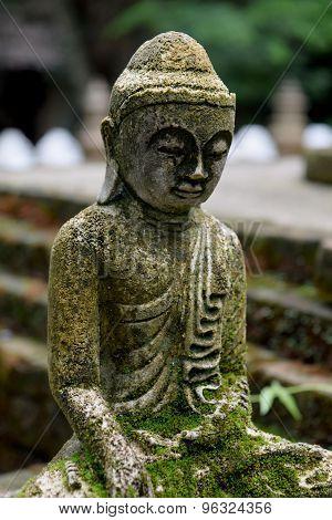 Stone Buddha statue  with moss  close up