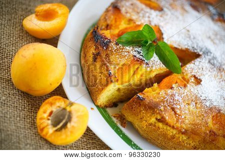Sponge Cake With Apricot